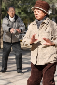 Tai Chi for Seniors - Chapter 1